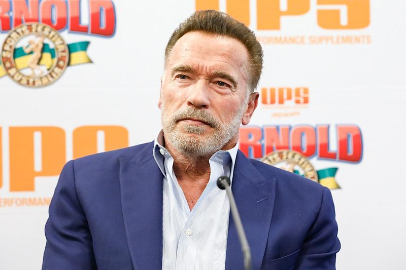Arnold Schwarzenegger Speaks Out After Being Dropkicked by an 'Idiot' During Event in South Africa