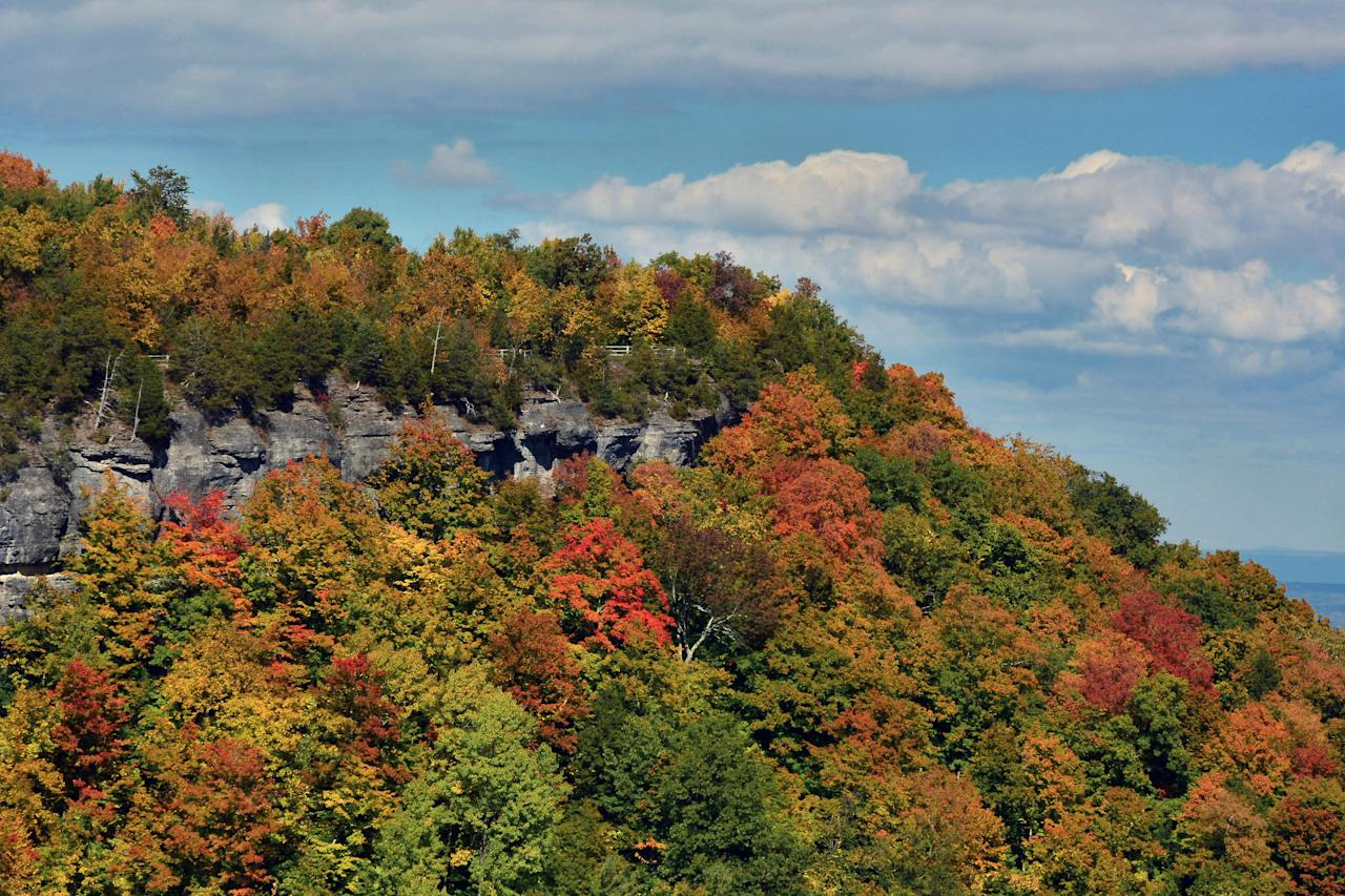 """<p>Near Albany and Saratoga Springs, the scenic overlook at <a href=""""https://parks.ny.gov/parks/128/"""">John Boyd Thacher State Park</a> in Voorheesville offers stunning views of the Hudson-Mohawk lowlands, including the southern Adirondacks. The park has more than 140 camping sites, so go ahead and make a weekend out of it.</p> <p><strong>Peak foliage:</strong> Second week of October</p>"""