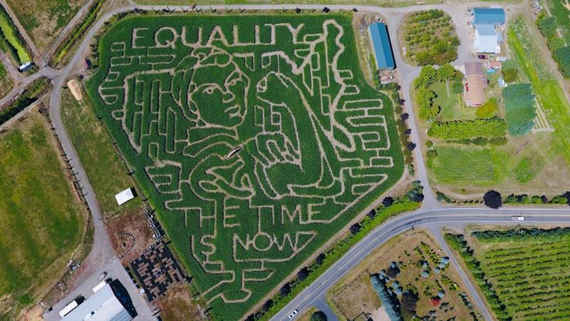 bella organic corn maze shows rosie the riveter with words equality the time is now
