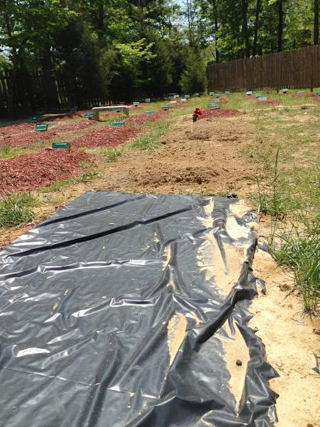 The alleged burial site of Boston Marathon bombing suspect Tamerlan Tsarnaev is covered in Doswell, Va. on May 10, 2013. Ruslan Tsarni, the uncle of Tamerlan Tsarnaev said Tsarnaev was buried in the cemetery in Doswell, near Richmond. Tsarnaev was killed April 19 in a getaway attempt after a gunbattle with police. His younger brother, Dzhokhar, was captured later and remains in custody. (AP Photo/Richmond Times-Dispatch, Zachary Reid).
