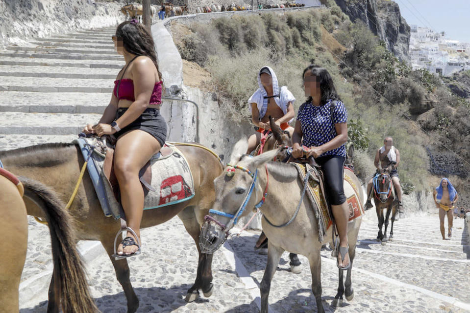 Tourists ride donkeys at Santorini in Greece (Picture: Caters)