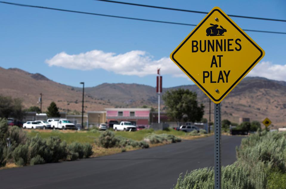 """Road sign at the Moonlite BunnyRanch that reads """"Bunnies at play"""" beneath a silhouette of two cartoon rabbits ... playing leapfrog?"""