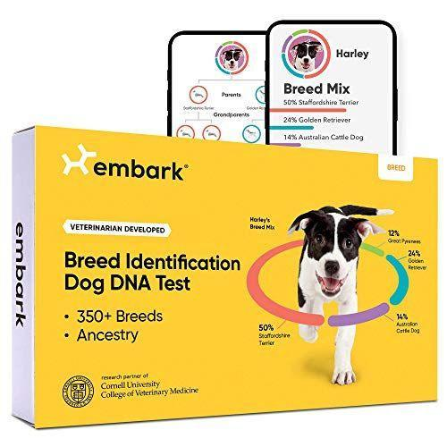 """<p><strong>Embark</strong></p><p>amazon.com</p><p><strong>$99.00</strong></p><p><a href=""""https://www.amazon.com/dp/B07HHF1VLH?tag=syn-yahoo-20&ascsubtag=%5Bartid%7C2164.g.36188027%5Bsrc%7Cyahoo-us"""" rel=""""nofollow noopener"""" target=""""_blank"""" data-ylk=""""slk:Shop Now"""" class=""""link rapid-noclick-resp"""">Shop Now</a></p><p>For the dad who has everything, you've got to think outside of the bark. Er, box. This """"dog DNA test"""" uses research-grade genotyping to precisely detect detailed breed information with a mail-in cheek swab sample.</p>"""