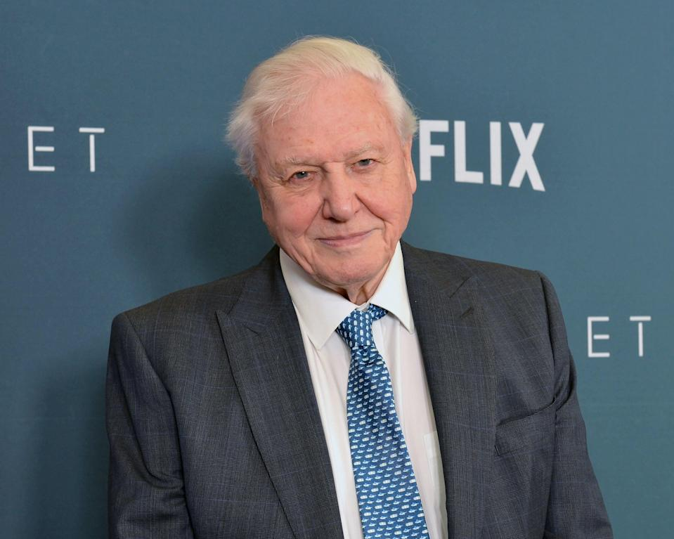 "Sir David Attenborough, narrator of Netflix's documentary series, ""Our Planet"" , attends the Washington, DC premiere at Smithsonian's National Museum of Natural History on April 10, 2019 in Washington, DC. (Photo by Shannon Finney/Getty Images)"