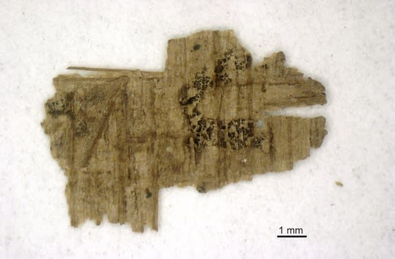 A fragment of the Gospel of Judas with writing.