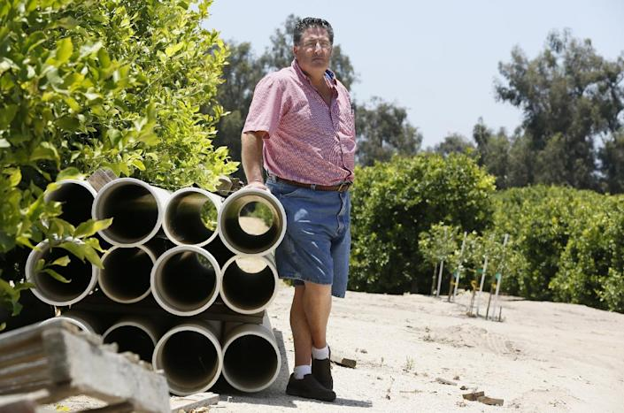 In this photo taken Monday, June 3, 2013, farmer David Schwabauer, a partner/manager of Leavens Ranches, a fourth-generation avocado and lemon grower, tours his property irritation system in Moorpark, Calif. The Schwabauer family has been considering allowing energy companies to drill new exploratory wells in their orchards in Moorpark, but the trees in Moorpark rely on irrigation from a depleted aquifer, and the county is already in drought. Drilling for oil, especially using hydraulic fracturing techniques, requires a lot of water as well, so the family has been divided on whether to go ahead with the offer. (AP Photo/Damian Dovarganes)