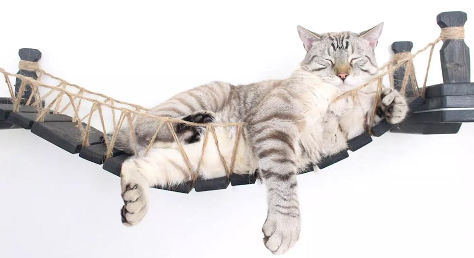 This cat bridge is the ultimate Christmas present. [Photo: CatastrophiCreations/ Etsy]