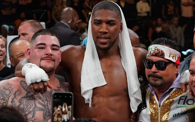 Anthony Joshua's rematch with Andy Ruiz Jr comes at a pivotal point in his career - AFP