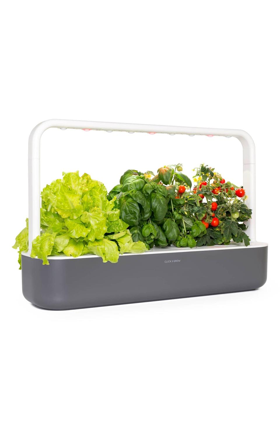 <p>Home cooks will love having this <span>Click &amp; Grow Smart Garden 9 Self Watering Indoor Garden</span> ($200) that produces fresh produce all year long, regardless of weather.</p>