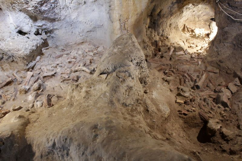 Fossilised remains, supposed to belong to Neanderthal men, are seen at a prehistoric site in Guattari cave in San Felice Circeo