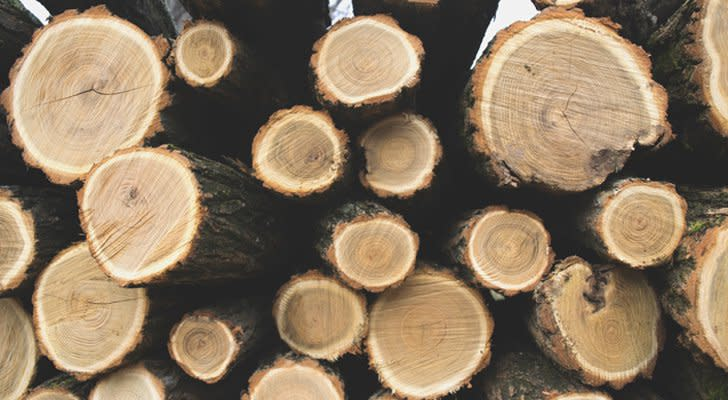 Blue-Chip Stocks to Buy: Weyerhaeuser (WY)