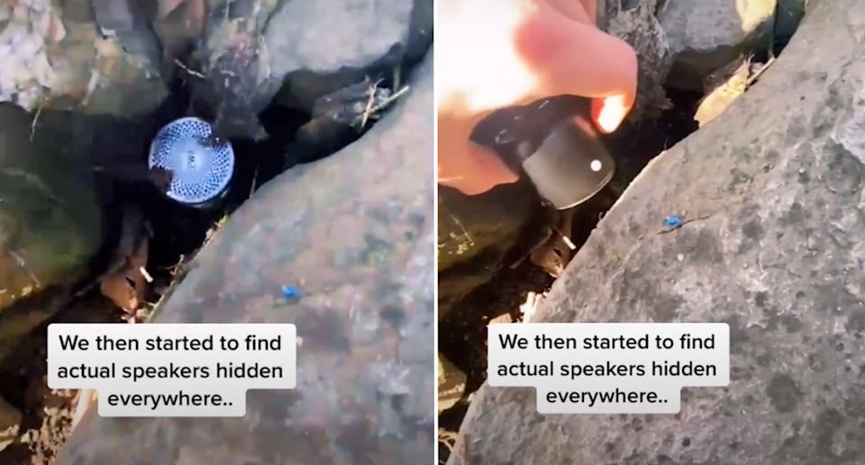 small cameras hidden among brush and besides drainpipes. Source: TikTok