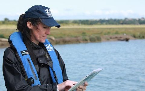 A researcher undertaking a seal survey - Credit: ZSL