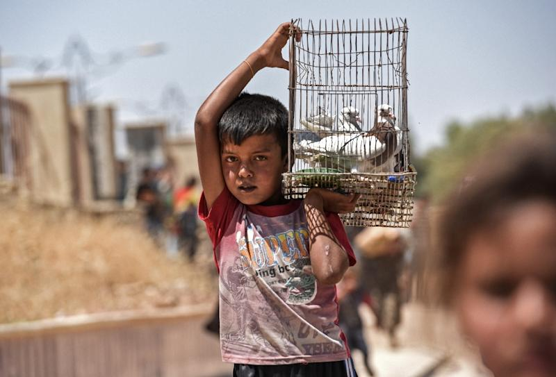 A displaced Iraqi boy carries a cage with pigeons as people arrive to a temporary camp at the compound of the closed Nineveh International Hotel in Mosul on June 16, 2017 (AFP Photo/MOHAMED EL-SHAHED)
