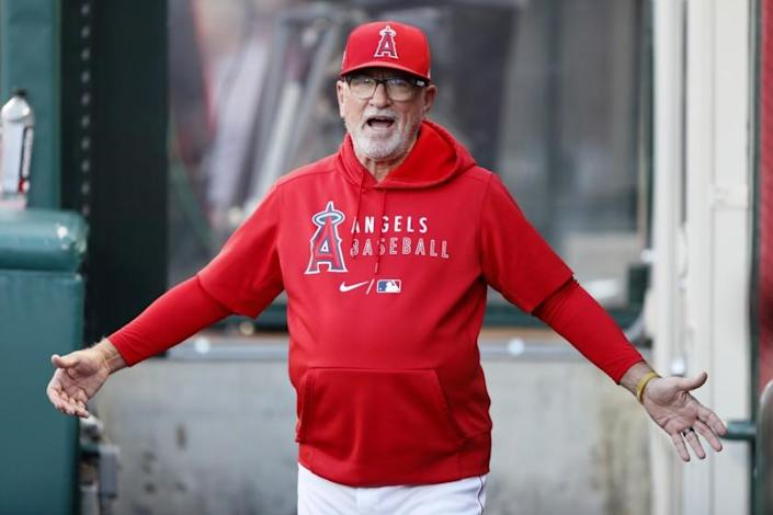 Los Angeles Angels' manager Joe Maddon looks for players on his team in the dugout.