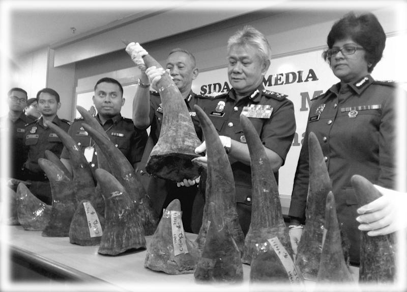 Kuala Lumpur International Airport (KLIA) customs director Hamzah Sundang (2nd R) poses with rhino horns that were seized on April 7 from Mozambique to Kuala Lumpur via Doha, during a news conference at the airport in Sepang, Malaysia April 10, 2017. (Photo: Rozanna Latiff/Reuters; digitally enhanced by Yahoo News)
