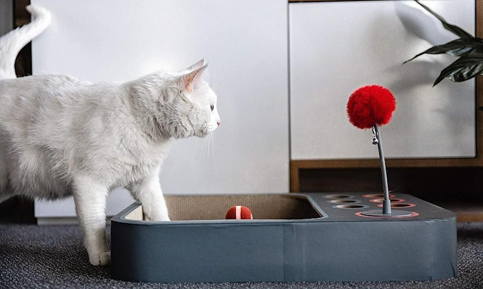 <p>The <span>meinno Cheerble Cat Ball 3-in-1 Board Game </span> ($80) will keep your cat entertained all day long!</p>