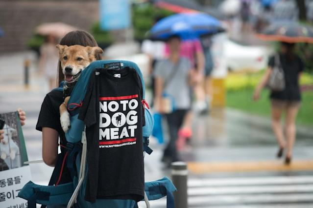 Activists have stepped up long-running campaigns to ban dog consumption, with online petitions urging boycotts of the 2018 Pyeongchang Winter Olympics over the issue, and protests in Seoul (AFP Photo/Ed Jones)