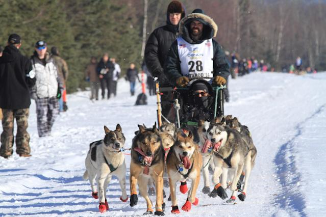Cim Smyth of Big Lake, Alaska, drives his dog team along the Campbell Creek Airstrip during the ceremonial start of the 2014 Iditarod Trail Sled Dog Race on Saturday, March 1, 2014, in Anchorage, Alaska. (AP Photo/Dan Joling)