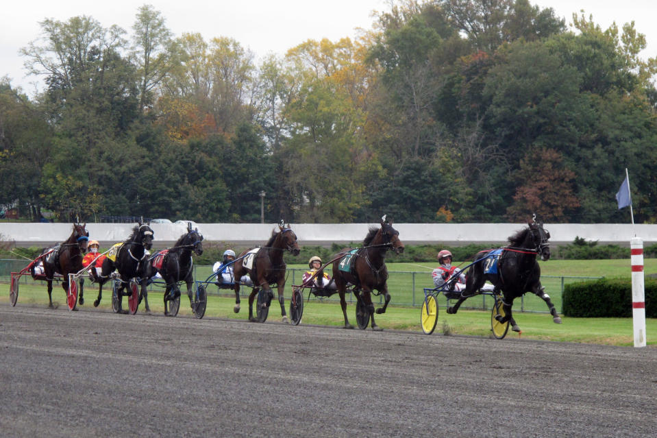 Trotters head for the finish line during a horse race at Freehold Raceway in Freehold, N.J., on Oct. 24, 2020. The track, in an agreement reached Tuesday, Jan. 12, 2021, has partnered with Australian company PlayUp to offer mobile sports betting in New Jersey. Freehold is the third New Jersey track to offer sports betting. (AP Photo/Wayne Parry)