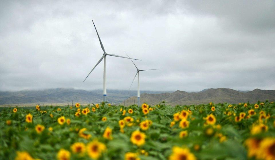China more than doubled construction of new wind and solar power plants in 2020 from a year earlier. Photo: Xinhua