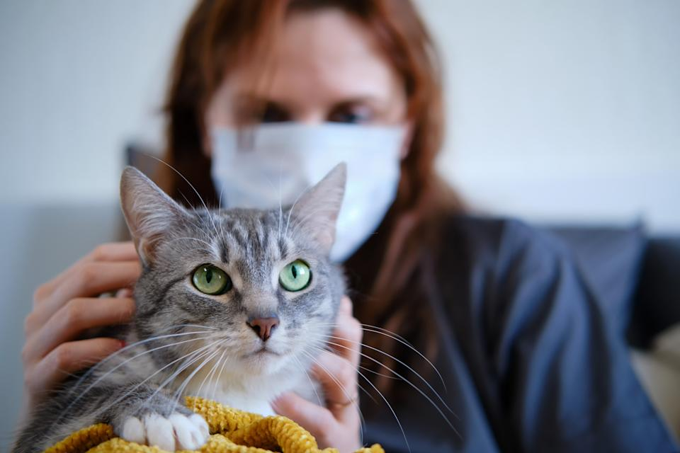 A sick woman in a medical mask strokes a cat lying in bed