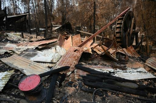 Australia's bushfires have destroyed more than 2,000 homes and burnt 10 million hectares (100,000 square kilometres) of land -- an area larger than South Korea or Portugal