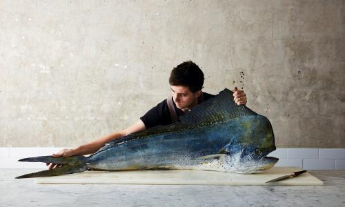 Josh Niland: meet the chef pioneering the 'nose to tail' of fish