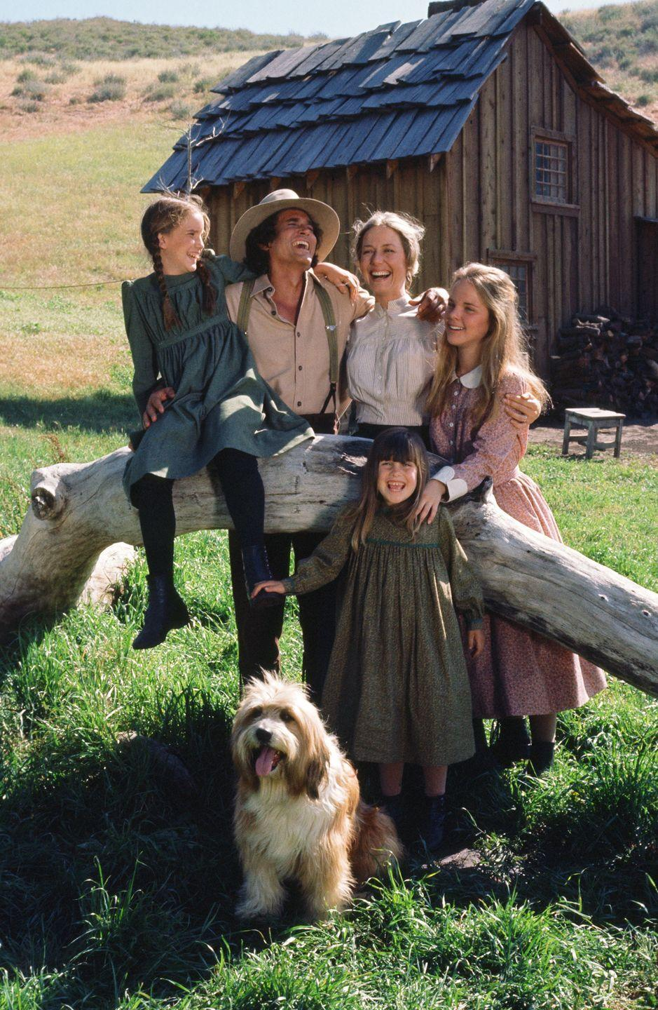 <p><strong><em>Little House on the Prairie</em><br><br></strong>This family drama, set in Walnut Grove, Minnesota and based on the books of the same name, was mandatory TV for kids growing up in the '70s. </p>