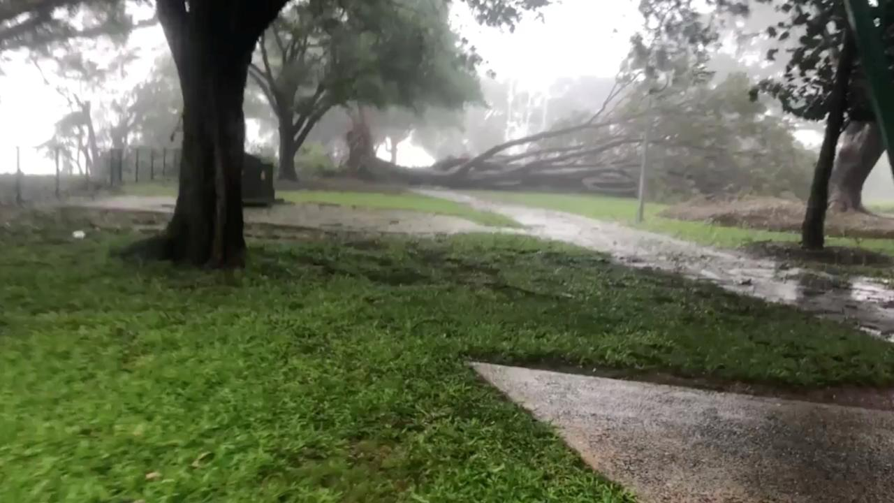 Trees fall during a storm brought by Cyclone Marcus in Darwin, Australia, March 17, 2018 in this still image taken from social media video. Brodie McGee/via REUTERS THIS IMAGE HAS BEEN SUPPLIED BY A THIRD PARTY. MANDATORY CREDIT.NO RESALES. NO ARCHIVES