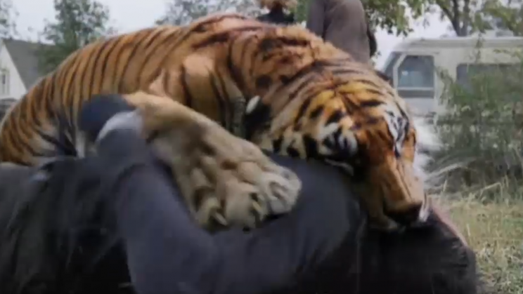 Shiva the Tiger (played by CGI and some puppets too)