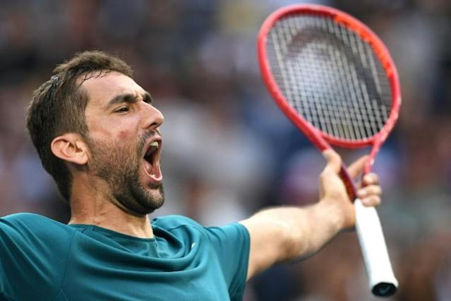 Former finalist Marin Cilic beat ninth seed Roberto Bautista Agut at the Australian Open (AFP Photo/Greg Wood)