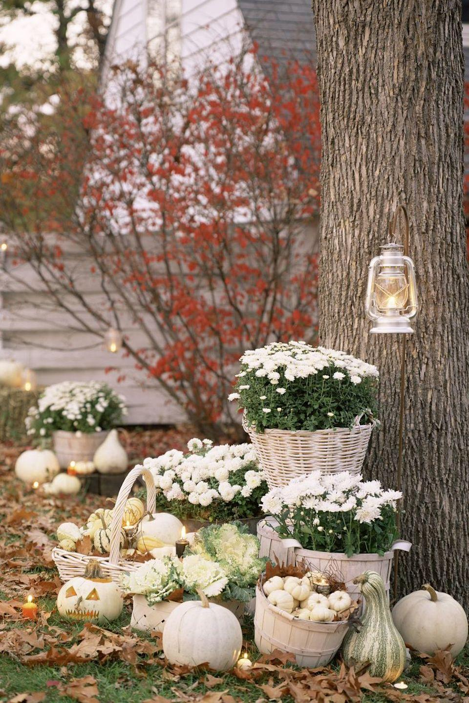 "<p>Keep it bright and ghostly with all whites and light neutrals. An all-white color palette makes fall staples like pumpkins, baskets, and mums feel elevated and elegant.</p><p><a class=""link rapid-noclick-resp"" href=""https://www.amazon.com/dp/B00PIROH4K/ref=sspa_dk_detail_0?psc=1&pd_rd_i=B00PIROH4K&pd_rd_w=n7tEM&pf_rd_p=7d37a48b-2b1a-4373-8c1a-bdcc5da66be9&pd_rd_wg=Fku2X&pf_rd_r=CTE63H0EZJWNTQ66SQBZ&pd_rd_r=eac93f81-eabf-40e8-b4ce-7faec0cb1921&spLa=ZW5jcnlwdGVkUXVhbGlmaWVyPUEzM1owR1VQOTlLVEhaJmVuY3J5cHRlZElkPUEwNjE0MzE3MjE0TlZJMEhSVDZCWiZlbmNyeXB0ZWRBZElkPUEwNTcyODExM09PQ1AwTTBDWkEzMyZ3aWRnZXROYW1lPXNwX2RldGFpbCZhY3Rpb249Y2xpY2tSZWRpcmVjdCZkb05vdExvZ0NsaWNrPXRydWU%3D&tag=syn-yahoo-20&ascsubtag=%5Bartid%7C10057.g.2554%5Bsrc%7Cyahoo-us"" rel=""nofollow noopener"" target=""_blank"" data-ylk=""slk:BUY NOW"">BUY NOW</a> <strong><em>Bushel Basket, $15</em></strong></p>"