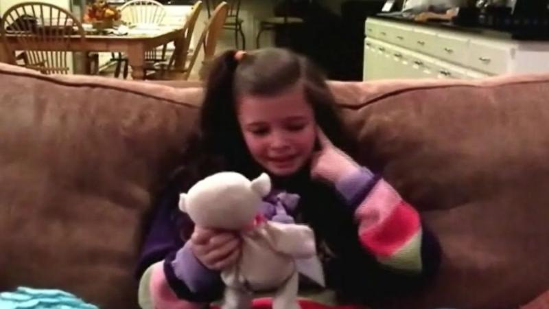 Lost Stuffed Animal Travels 1,150 Miles Home to Little Girl