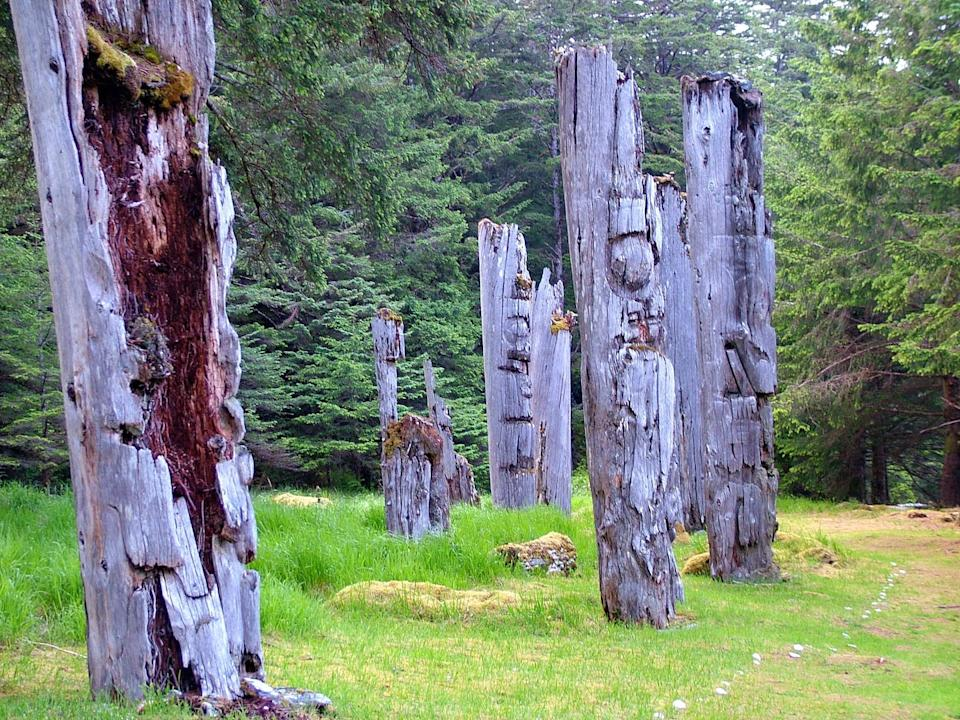 Weathered totem poles stand in a field.