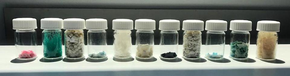 Vials of plastic lined up in a row that was analysed by Spanish researchers who were looking into the effects they have on loggerhead sea turtles.