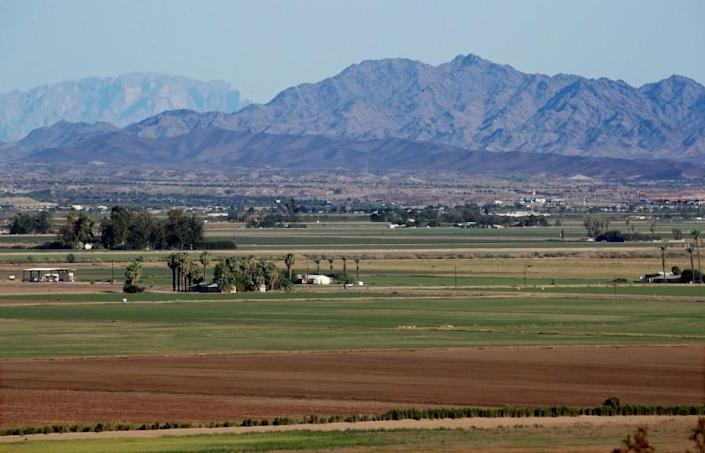 BLYTHE, CALIF. - SEP 7, 2021. Agricultural fields spread out across the Palo Verde Valley in Blythe. The Metropolitan Water District is working with local growers lto leave some of their fields fallow in exchange for cash payments. The desert agricultural industry in Blythe draws water from the nearby Colorado River, and the goal is for farmers to use less river water and allow unused supplies to serve the needs of people in urban areas downstream. (Luis Sinco / Los Angeles Times)