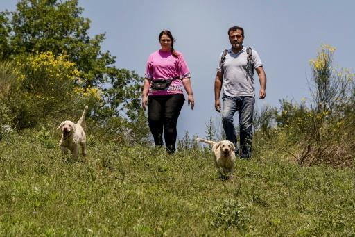 Evgjeni Pano, 28, (L) and her husband Panajot Pano, 39, set off every morning for Albania's southern mountains with their two dogs to hunt for truffles