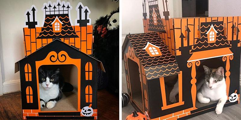 Get a Halloween House For Your Cat
