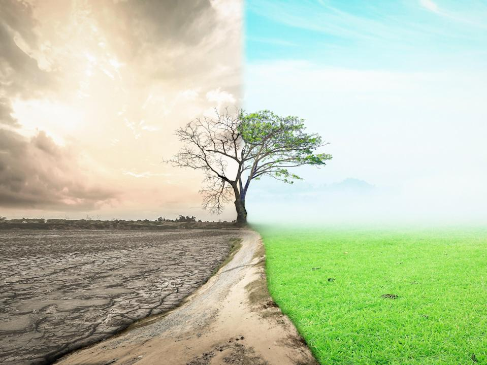 This year's Earth Day theme is 'Restore Our Earth',  with participants urged to focus on repairing the world's ecosystems (Getty Images/iStockphoto)