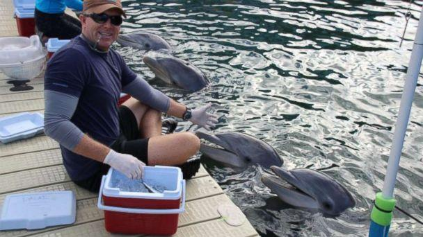 PHOTO: Phillip Admire, director of zoology at Island Dolphin Care in Key Largo, Florida, braved Hurricane Irma to care for the 8 dolphins that are housed at his non-profit facility.<p>(Phillip Admire/Island Dolphin Care)