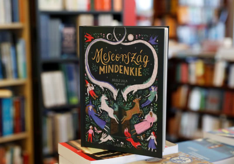 """Wonderland is for everyone"" is pictured at a bookstore in Budapest"