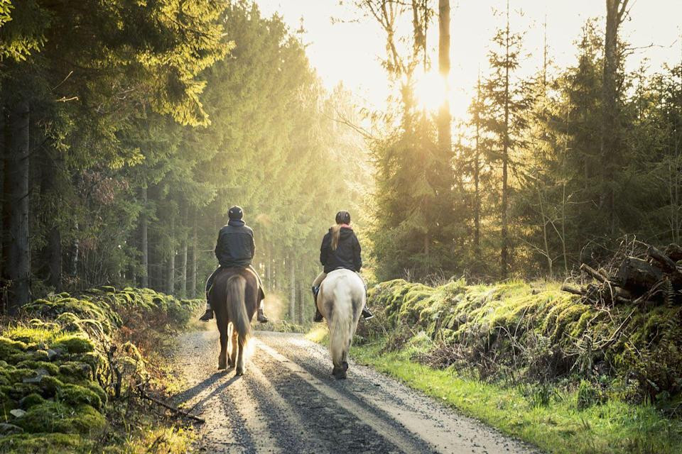 """<p>There's something about the fall and horses that just goes together. Horseback riding can be a great date because you're connecting with animals and nature, says <a href=""""http://www.peacefulparentingnj.com"""" rel=""""nofollow noopener"""" target=""""_blank"""" data-ylk=""""slk:Carley Aroldi"""" class=""""link rapid-noclick-resp"""">Carley Aroldi</a>, child/family/couples therapist with a private practice in New Jersey. """"It's out of the ordinary, and connection and chemistry can be created by sharing this new experience."""" Not your thing? You can go to a petting zoo instead.</p>"""