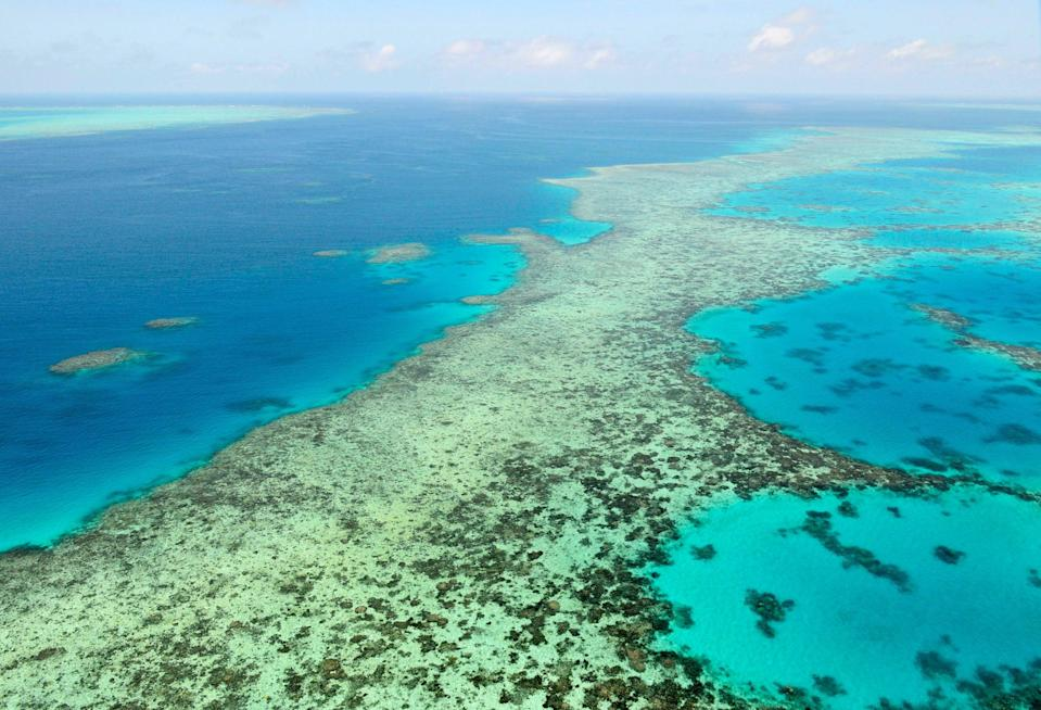 The Great Barrier Reef is one of Unesco's World Heritage sites at risk of being downgraded to the 'endangered list' (AP)