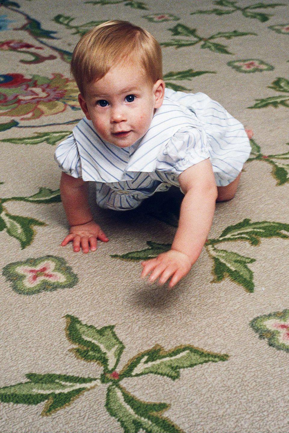 <p>Prince Harry learns to crawl in Kensington Palace.</p>
