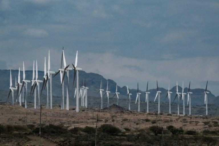 The $680-million wind power project is delivering 310 megawatts of renewable power to Kenya's national grid (AFP Photo/Yasuyoshi CHIBA)