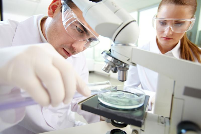 Two scientists conduct lab research.