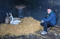 Animal Manager of Wildlife Rehabilitation Ireland, Dan Donoher, said the hospital is preparing for 'orphan season'