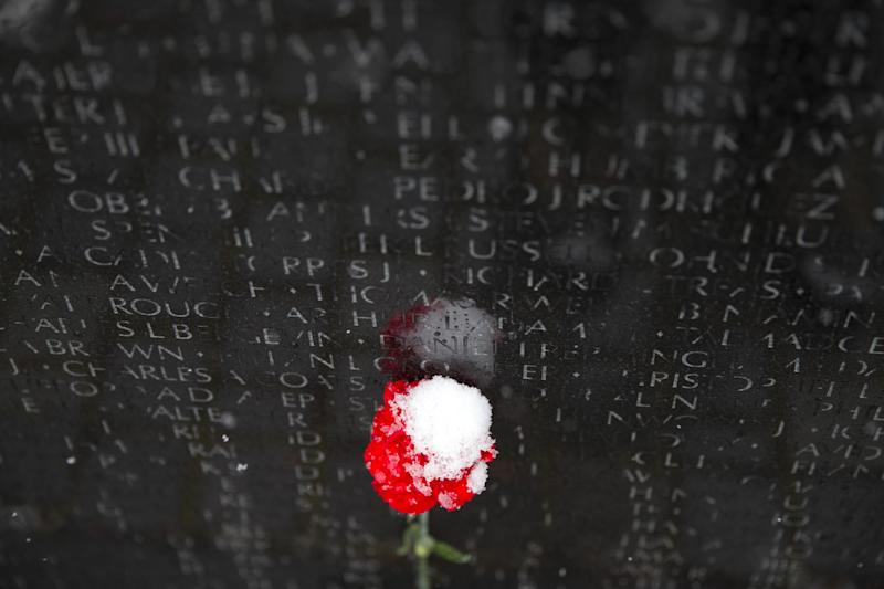 A carnation covered with snow sits at the Vietnams Veterans Memorial in Washington, Tuesday, March 25, 2014. The calendar may say it's spring, but the mid-Atlantic region is seeing snow again. The National Weather Service has issued a winter weather advisories for much of the region Tuesday. The advisories warn that periods of snow could make travel difficult, with slippery roads and reduced visibility. (AP Photo/ Evan Vucci)