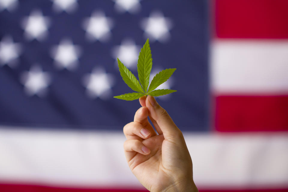 The clemency from Trump comes as more states are legalizing marijuana. Image:  Getty